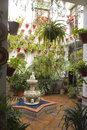 Andalusian Patio Royalty Free Stock Photo
