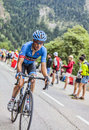 Andrew talansky climbing alpe d huez france july the american cyclist from belkin pro cycling team the difficult road to Royalty Free Stock Photos