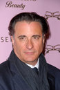 Andy Garcia,Tarina Tarantino Stock Photos