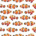 Anemonefish (Clownfish) shoal white seamless vector pattern
