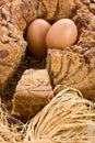 Angel food cake closeup affettato Immagine Stock Libera da Diritti