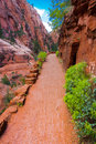 Angel Landing Trail in Zion National Park,Utah Royalty Free Stock Photo