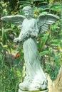 Angel statue  in flower garden Royalty Free Stock Photo