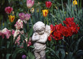 Angel in the Tulips Royalty Free Stock Photo