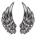 Wings Bird feather Black & White Tattoo Vector Illustration 55 Royalty Free Stock Photo