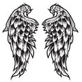 Wings Bird feather Black & White Tattoo Vector Illustration 44 Royalty Free Stock Photo