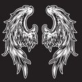 White Wings Bird feather on black background  Tattoo Vector Royalty Free Stock Photo