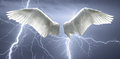Angel Wings With Background Ma...