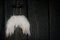 Angel wings on dark background Stock Photography