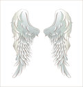 Angel wings illustration of isolated on white Stock Image