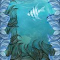 Angelfish blue ocean exotic seaweed Stock Image