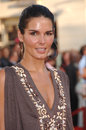 Angie Harmon Royalty Free Stock Photo