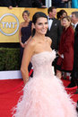 Angie Harmon Royalty Free Stock Photos