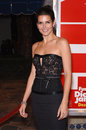 Angie Harmon Stock Photo