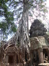 Angkor thom in cambodia its the one that have trees around the walls better known like wat that is the name of the Royalty Free Stock Photos