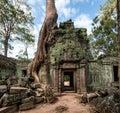 Angkor Wat Cambodia. Ta Prohm ...