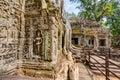 Angkor Wat Cambodia. Ta Prohm Khmer ancient Buddhist temple. Royalty Free Stock Photo