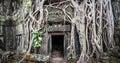 Angkor Wat Cambodia. Ta Prom K...