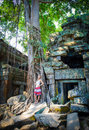 Angkor wat a girl standing by a large jungle tree growing among the stones of the temple of ta prohm in siem reap cambodia Royalty Free Stock Images