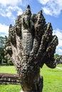 Angkor wat seam reap cambodia Royalty Free Stock Photography