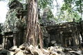 Angkor watt complex temple in cambodia Royalty Free Stock Photos