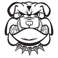 Angry bulldog head black and white vector illustration of Royalty Free Stock Photo