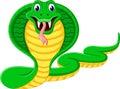 Angry cobra cartoon illustration of Stock Photos