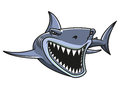 Angry danger shark cartoon style mascot design Royalty Free Stock Image