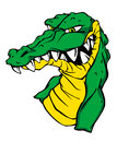 Angry green crocodile Royalty Free Stock Photo