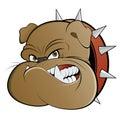 Angry guard dog