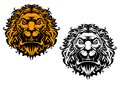 Angry lion head for heraldry mascot or tattoo design Stock Image