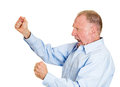 Angry older man closeup side view profile portrait mad upset senior mature funny looking business fists in air open mouth yelling Stock Image