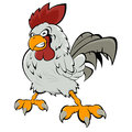 Angry rooster Stock Photo