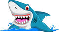 Angry shark cartoon Royalty Free Stock Photo