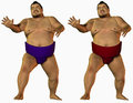 Angry sumo wrestlers two with different colored loincloths white background Stock Images