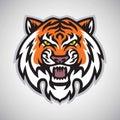 Angry Tiger Head Logo Vector Mascot Illustration Royalty Free Stock Photo