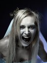 Angry zombie corpse bride Royalty Free Stock Photos