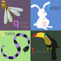 Animal alphabet Royalty Free Stock Photo