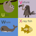 Animal alphabet Royalty Free Stock Photography