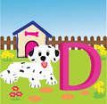 Animal alphabet d illustration of letter with a cute dog is for dog Royalty Free Stock Image
