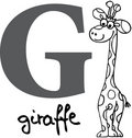 Animal alphabet G (giraffe) Stock Photo