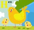 Animal Alphabet For The Kids: ...