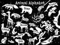 Animal alphabet poster for children. Animals