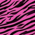 Patrón rosa piel textura