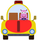 Animal cab a cute illustration of a hippopotamus driving a taxi Stock Photo