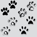 Animal cat paw track feet print icons with shadow foot grunge banner vector illustration traces isolated on white Stock Photos
