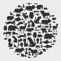 Animal circle pattern cartoon vector illustration Stock Photography