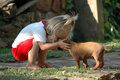 image photo : Child and puppy pet