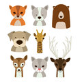 Animal design over white background vector illustration Stock Photography