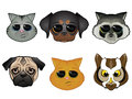 Animal Face Icons Stock Photo